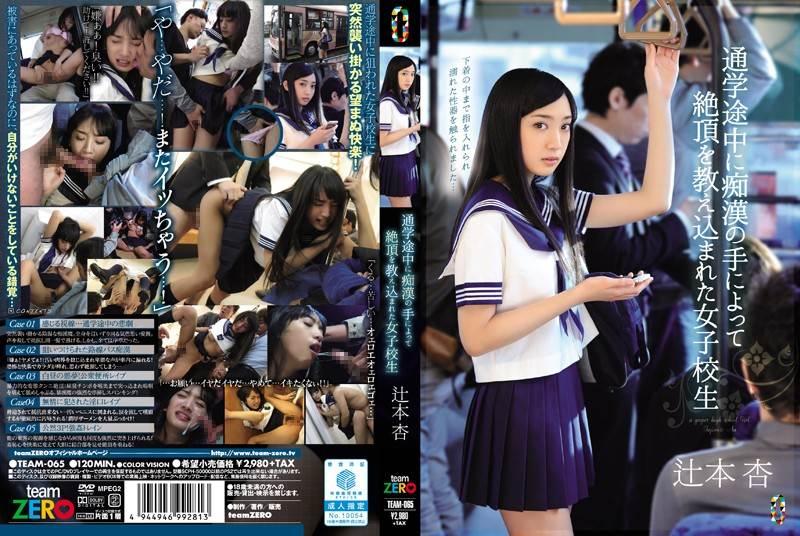 TEAM-065 - 辻本杏 - 通学途中に痴漢の手によって絶頂を教え込まれた女子校生 辻本杏