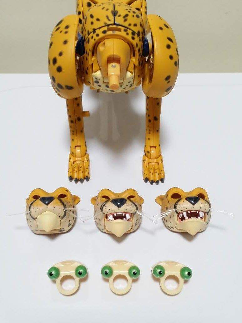 [Masterpiece] MP-34 Cheetor et MP-34S Shadow Panther (Beast Wars) - Page 2 4AviPil5