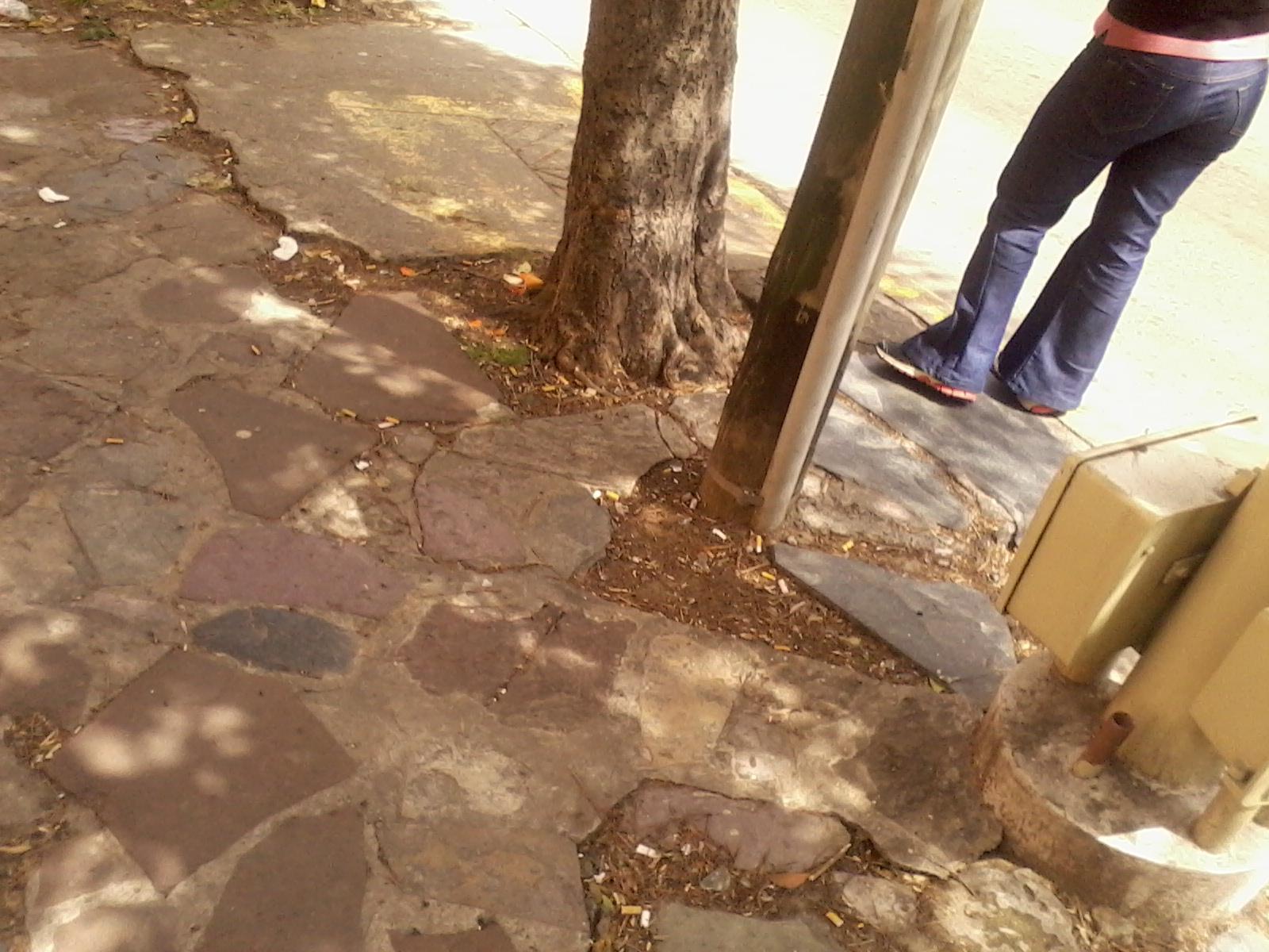 Culos Y Papos Cazados En La Calle Parte