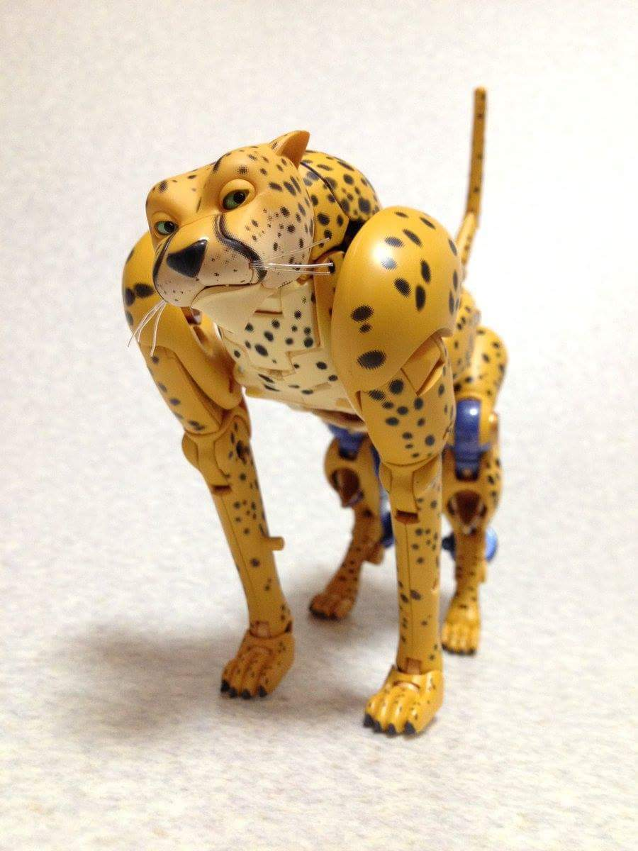[Masterpiece] MP-34 Cheetor et MP-34S Shadow Panther (Beast Wars) - Page 2 QweDXW97