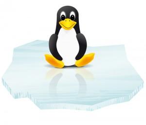 Linux Mint vs. Ubuntu: ¿Cuál es el mejor sistema operativo?