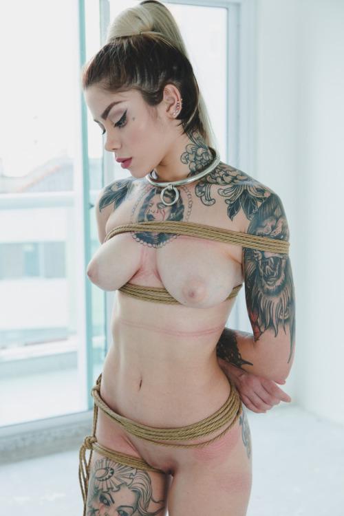 ray mattos porn