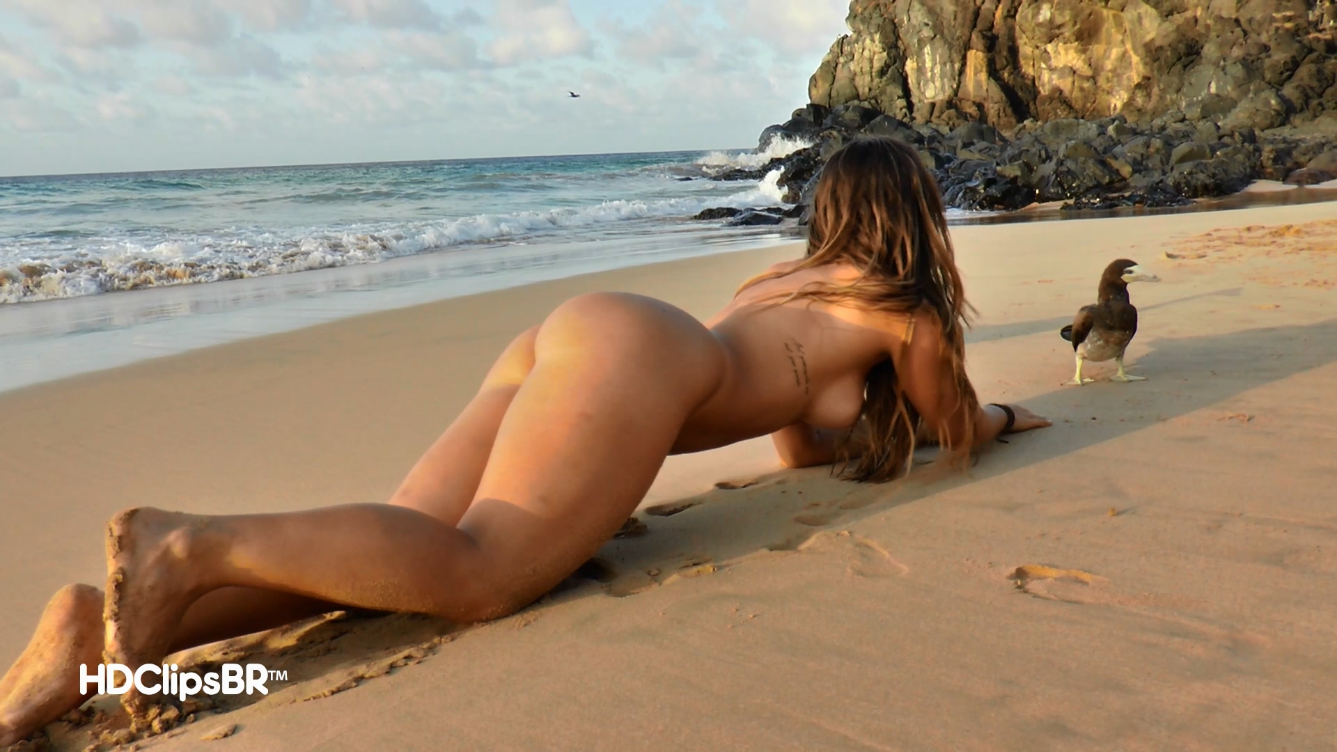 Aricia Silva Nua Na Sexy aricia silva pelada xvideos ⭐ n�o conto