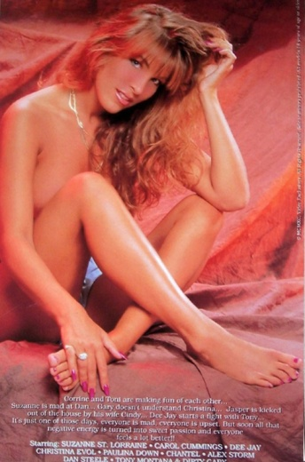 image Suzanne st lorraine amp dan steele summer dreams 1990