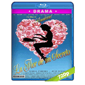 La Flor De Mi Secreto (1995) BRRip 720p Audio Castellano 5.1