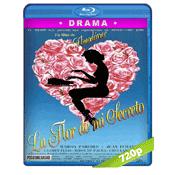 La Flor De Mi Secreto (1995) BRRip 720p Audio Castellano 5.1