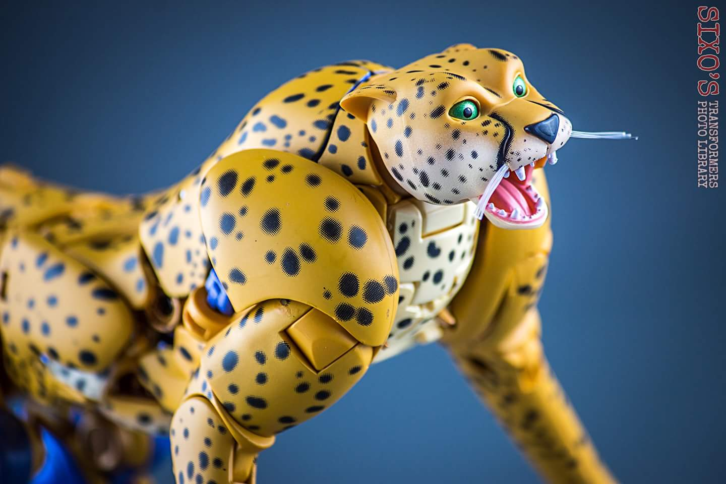 [Masterpiece] MP-34 Cheetor et MP-34S Shadow Panther (Beast Wars) - Page 2 Sv67nPen