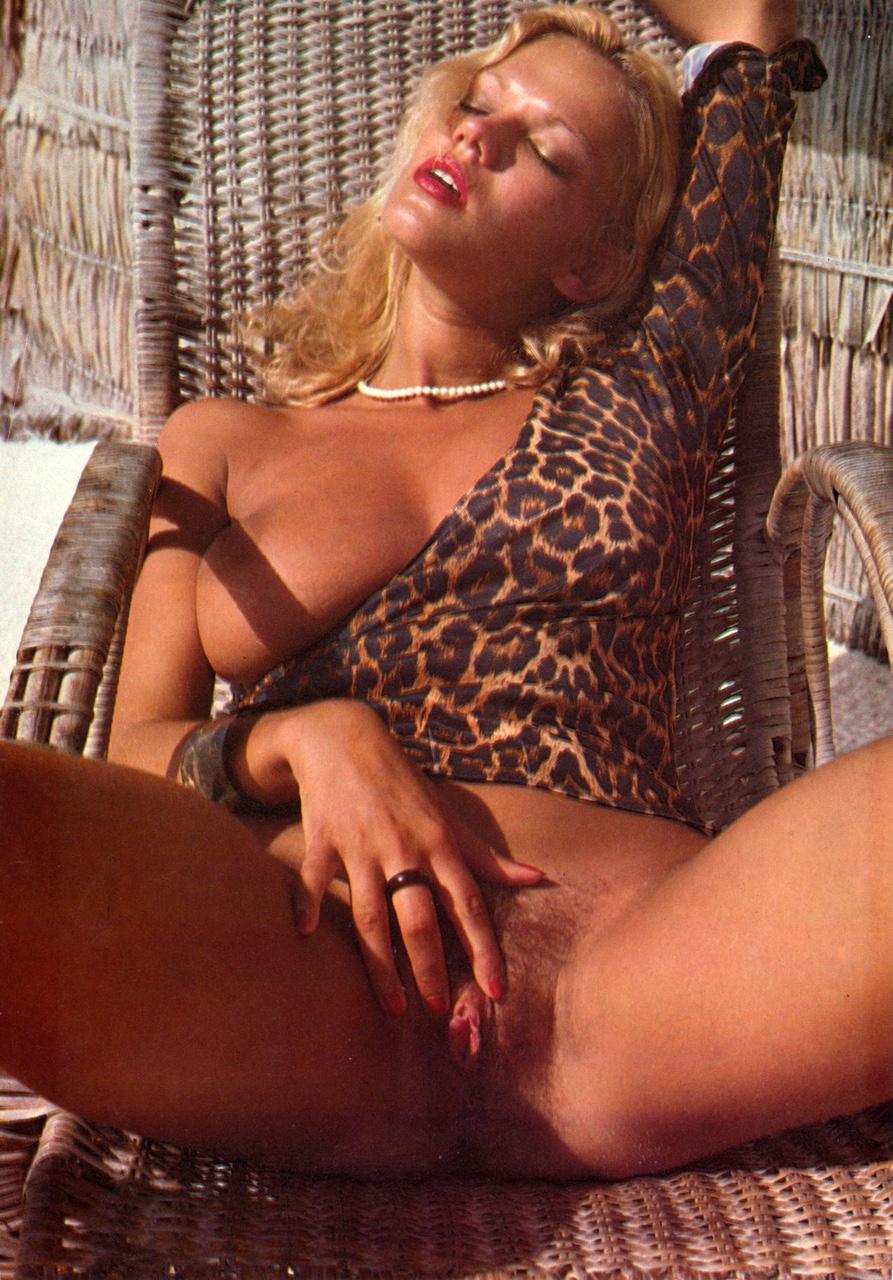 Brigitte lahaie porn star