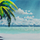 Arcanus Island | Hermana | DG5Vb689