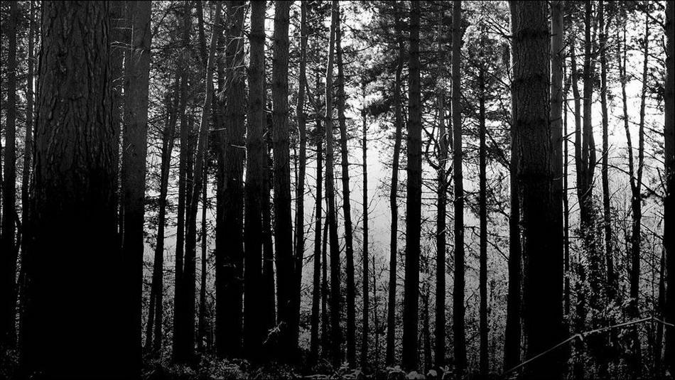 07 ghost 01 el sentimiento de ansiedad por el futuro - 4 8