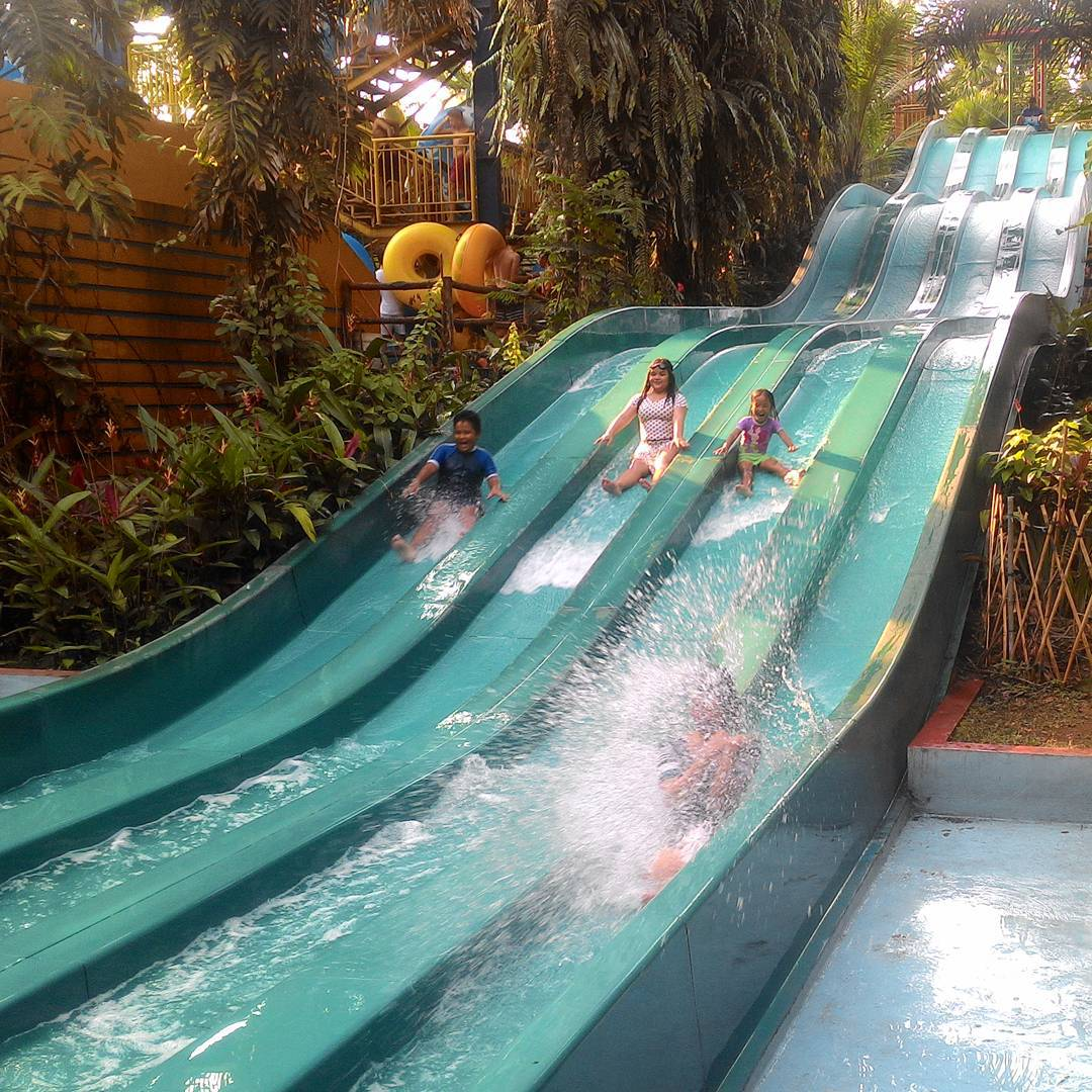 the jungle waterpark racer slide