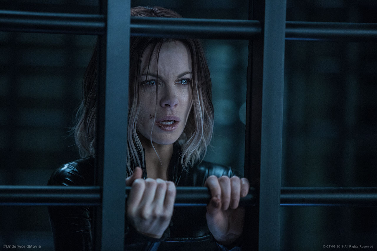 watch underworld blood wars online free hd