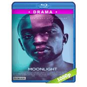 Moonlight (2016) BRRip Full 1080p Audio Ingles Subtitulada 5.1