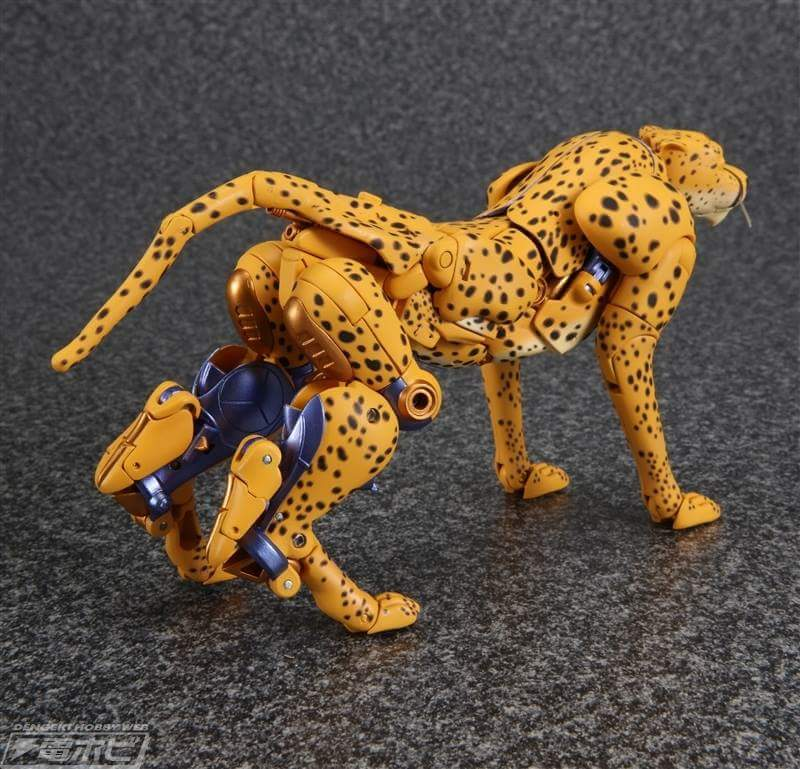 [Masterpiece] MP-34 Cheetor et MP-34S Shadow Panther (Beast Wars) - Page 2 EUbMisIE