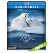 Osos Polares Ojos En El Hielo (2012) BRRip Full 1080p Audio Dual Latino-Ingles 5.1