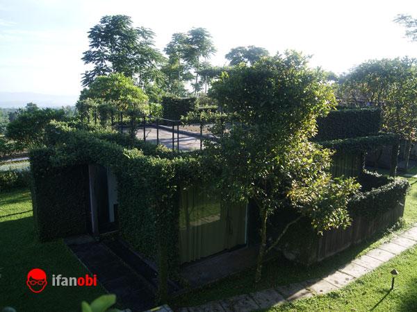 Tea Garden Resort, Perpaduan Bangunan Modern Minimalis Dan Alam Pedesaan