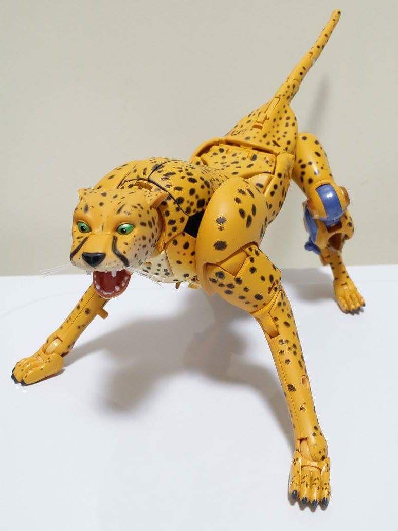 [Masterpiece] MP-34 Cheetor et MP-34S Shadow Panther (Beast Wars) - Page 2 L8LuEezM