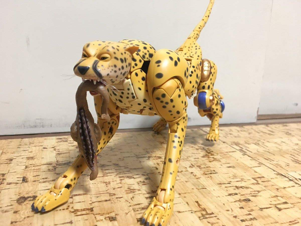 [Masterpiece] MP-34 Cheetor et MP-34S Shadow Panther (Beast Wars) - Page 2 Lmw4xVZD