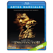 El Protector (2005) BRRip 720p Audio Trial Latino-Castellano-Ingles 5.1