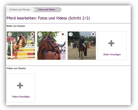 Pferdedating-Seiten kostenlos