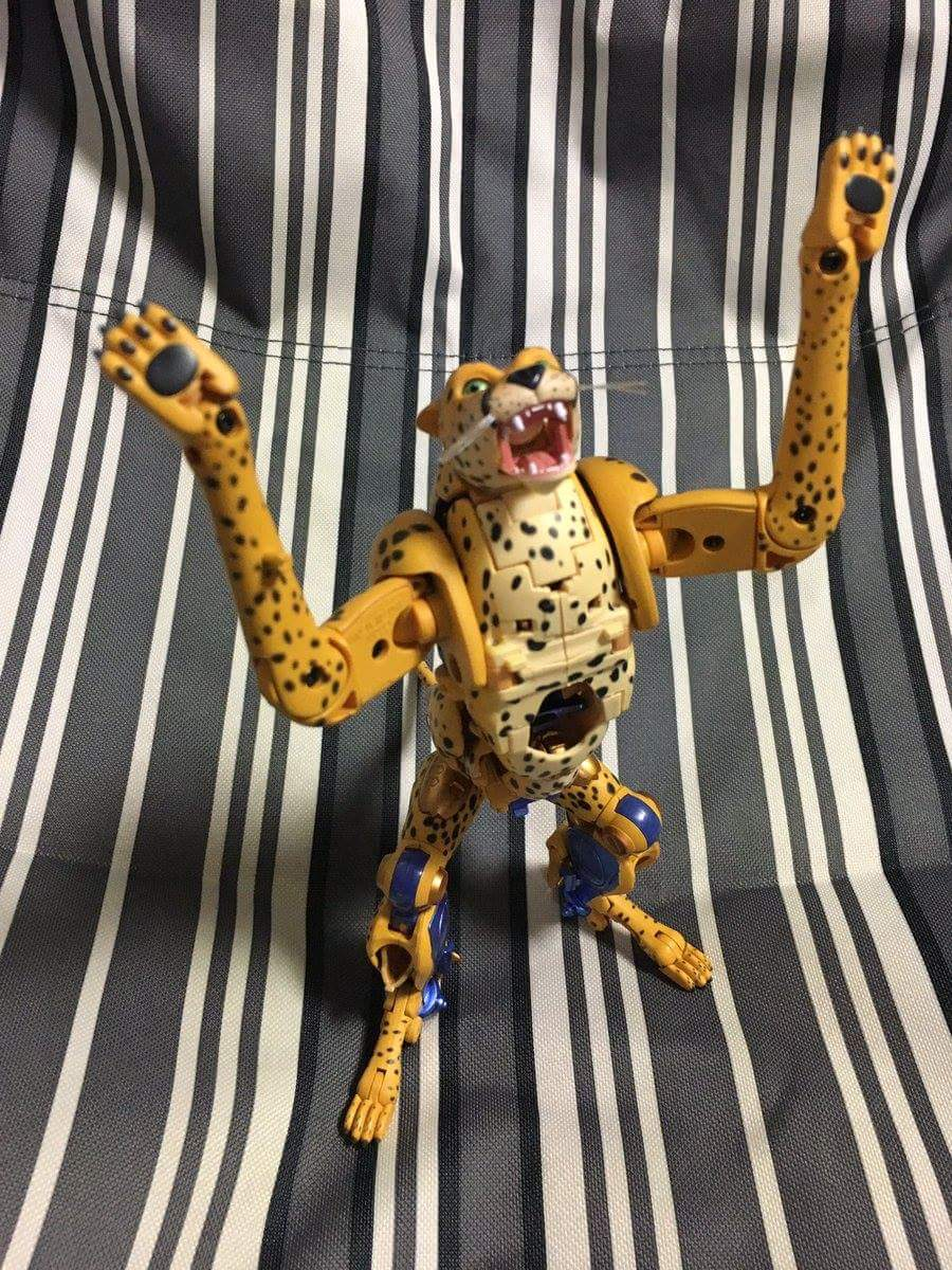 [Masterpiece] MP-34 Cheetor et MP-34S Shadow Panther (Beast Wars) - Page 2 9wbbTPsL