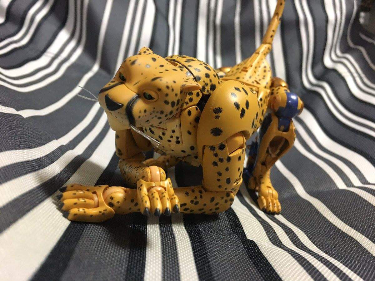[Masterpiece] MP-34 Cheetor et MP-34S Shadow Panther (Beast Wars) - Page 2 7R3qOYyE