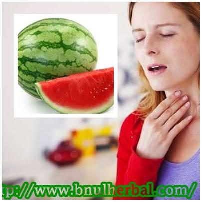 Manfaat Buah Semangka Untuk Panas Dalam