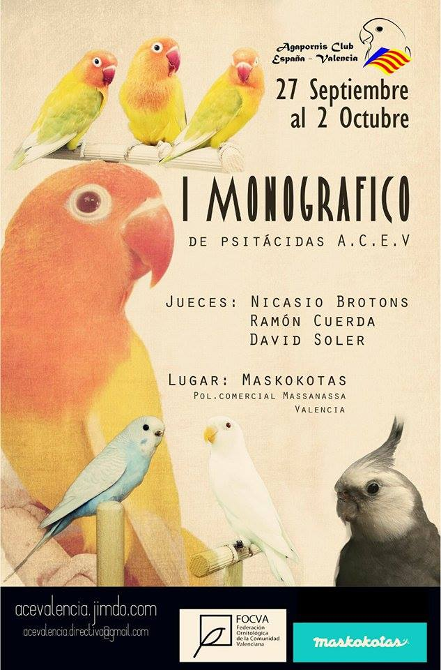 Monografico de psitacidas Ace Valencia!! Uet3i2MO