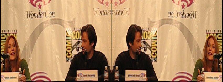 2008 Californication DVD Launch MSkzHUeP