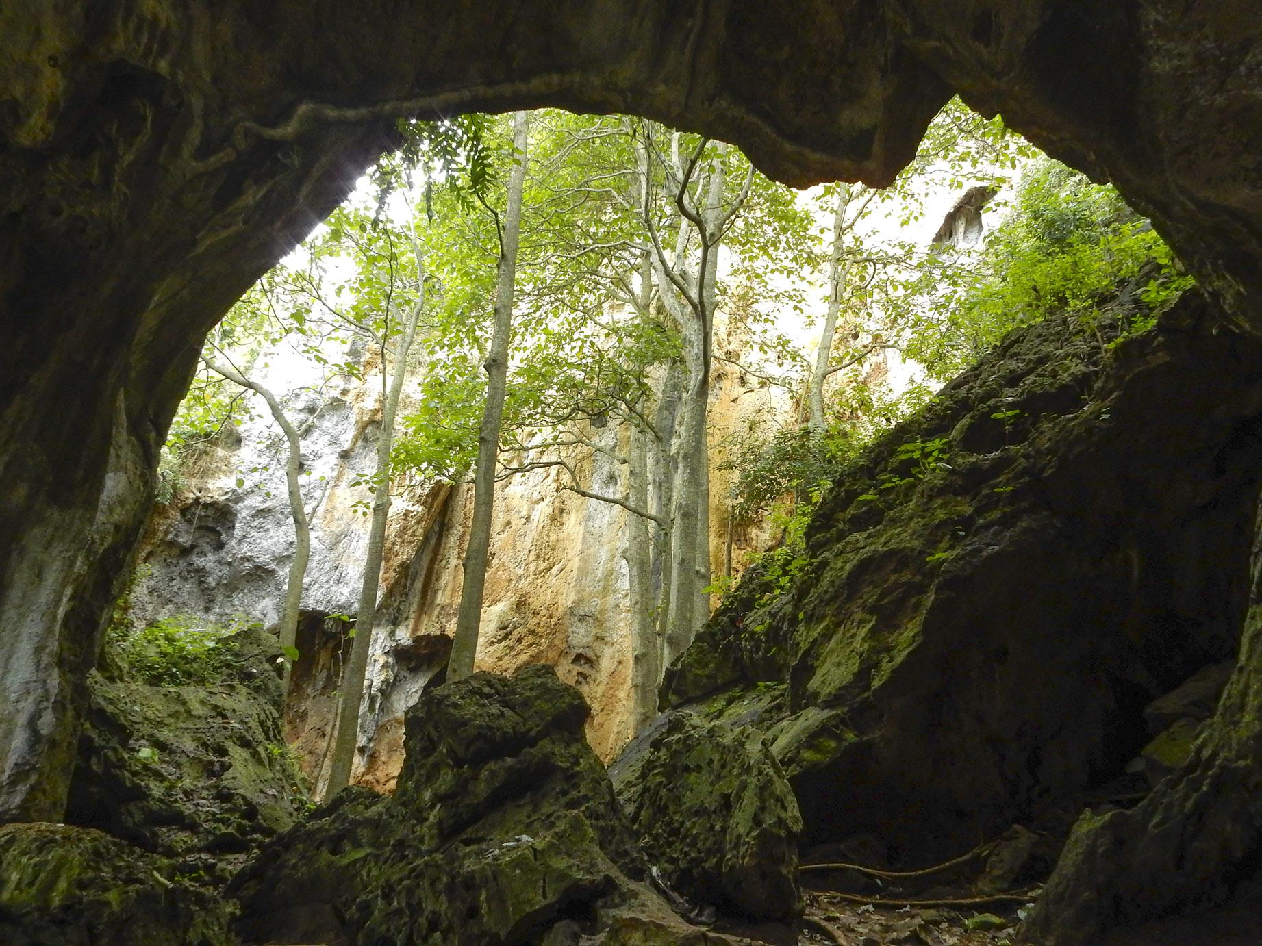 ditemukan fosil manusia purba di goa pawon, bandung barat
