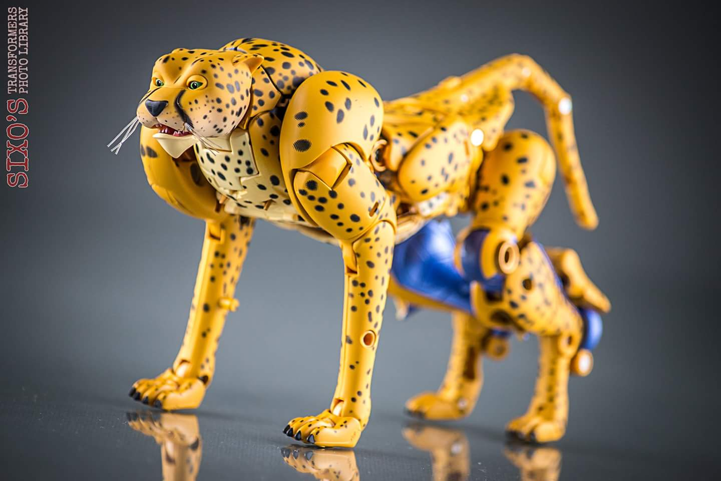[Masterpiece] MP-34 Cheetor et MP-34S Shadow Panther (Beast Wars) - Page 2 YbmeoQVk