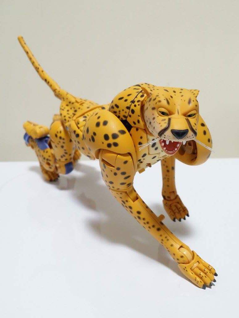 [Masterpiece] MP-34 Cheetor et MP-34S Shadow Panther (Beast Wars) - Page 2 Q8wV6h8T