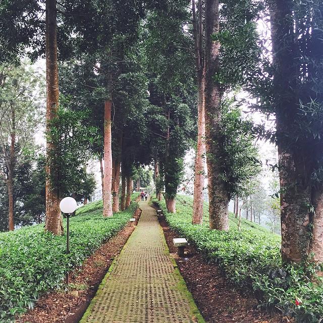 Wisata Bogor: Taman Riung Gunung Puncak Jawa Barat