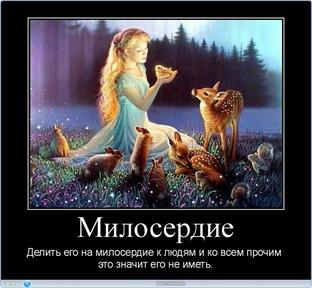 http://i.imgbox.com/ENcHl8GL.jpg