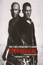 Prison Break : Sequel (Season 5 Complete)