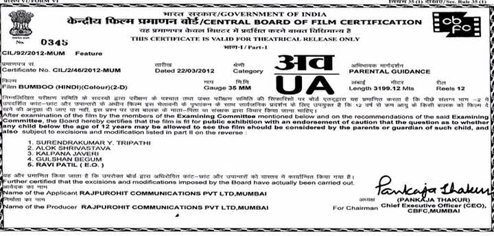 Bumboo (2012) (Non-Retail) - Hindi Movie - DVDRip - x264 - 1CDRip - AAC - Team MJY