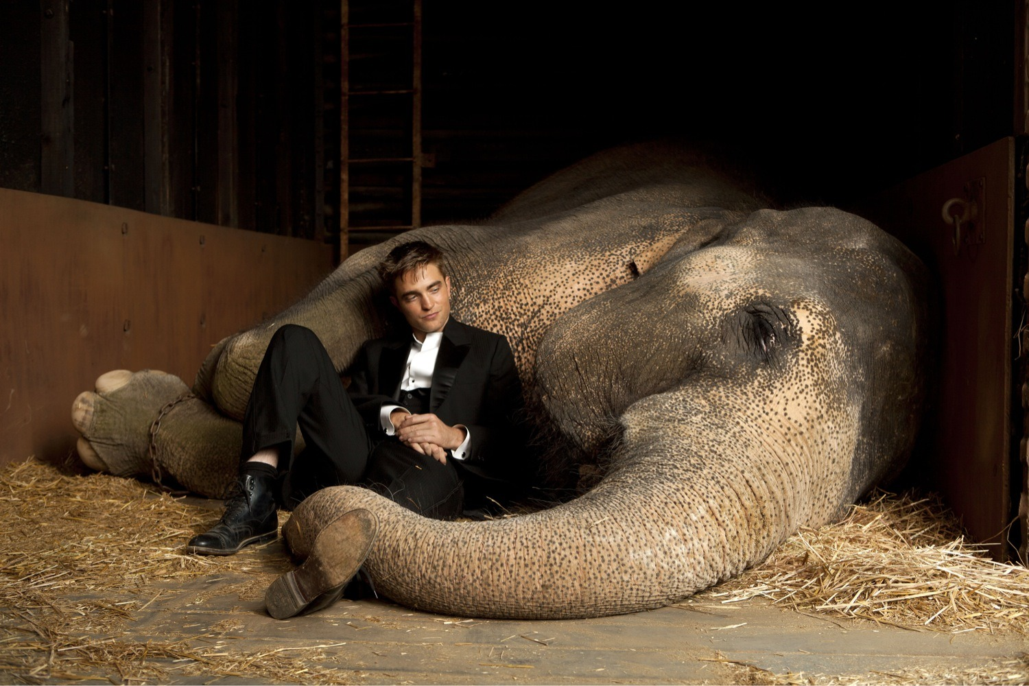 Rob with elephant